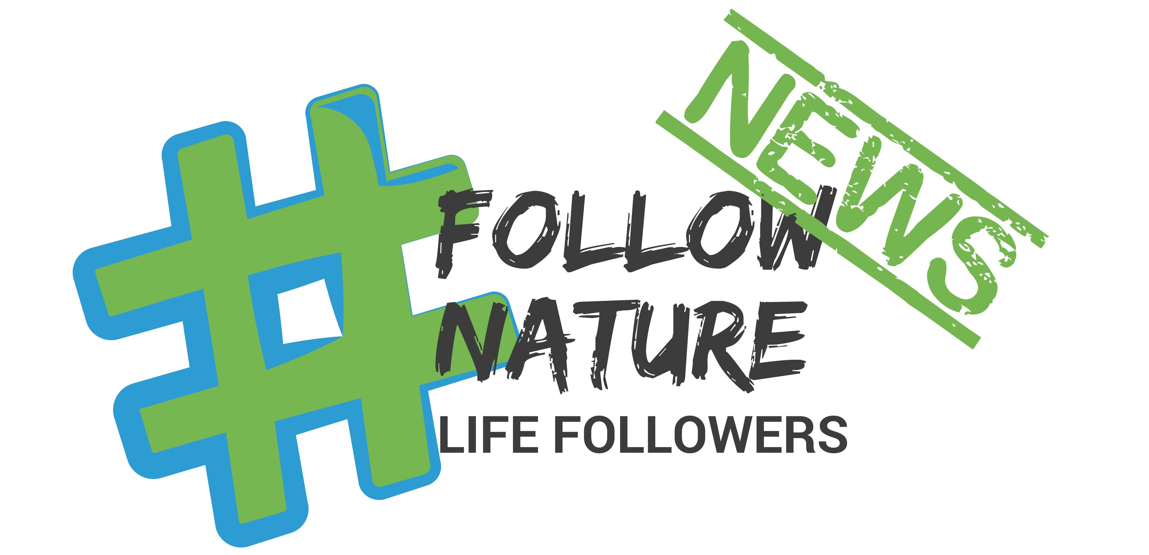 #FollowersNews: Noticiario mensual (Julio 2019)